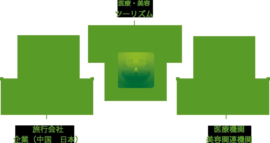 医療機関 美容関連機関 旅行会社 企業(中国 日本)